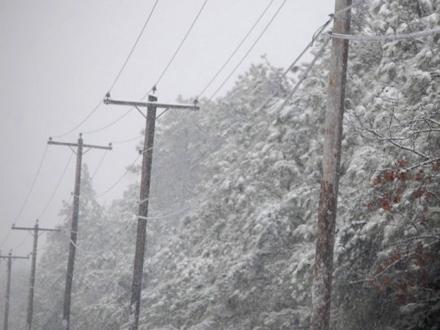 Zbog snega porušeno više od 500 električnih stubova FOTO: Profimedia
