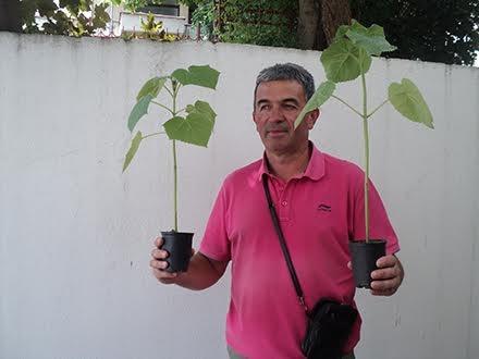 Tošić, pionir paulovnije na jugu Srbije FOTO OK Radio