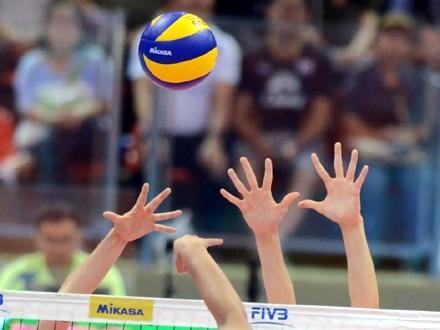 Srbija vodi na tabeli sa pet pobeda FOTO: Profimedia