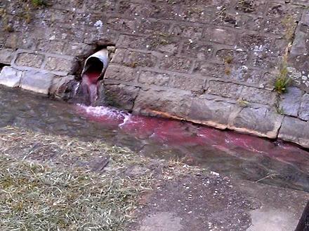 Misteriozna tečnost preplavila gradsku reku FOTO: Printscreen