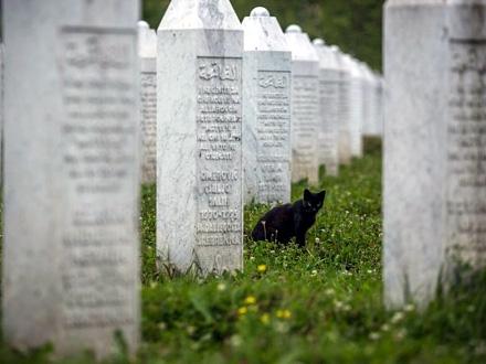 U Federaciji BiH je proglašen Dan žalosti FOTO: Getty Images