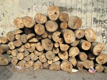 Prodavali drva