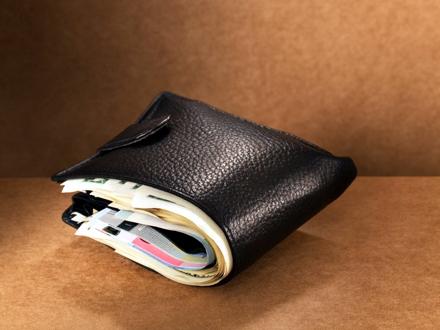 Naša novčanik pun para FOTO: Profimedia