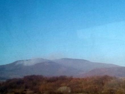Šumski požar kod Vranja. Foto: S.Tasić/OK Radio