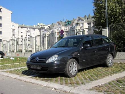Protiv nesavesnih vlasnika će biti podneti prekršajni nalozi FOTO: vranje.org.rs