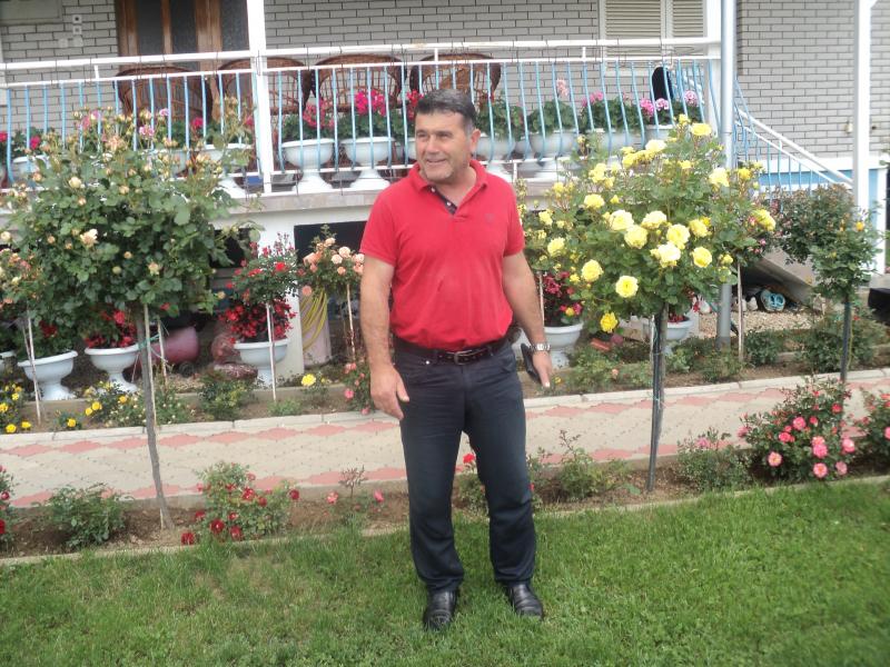 Bujar Haliti ispred svojih ruža. Foto: S.Tasić/OK Radio