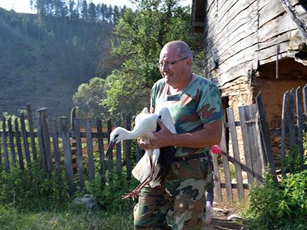 Jednog mladunca zdržao Zavod za zaštitu prirode zbog oporavka. Foto: PIO Vlasina