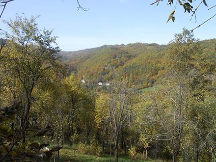 Selo Mijovce. Foto: S.Tasić/OK