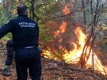 Kad će da pomognu, ako ne sad? FOTO: MUP Srbije