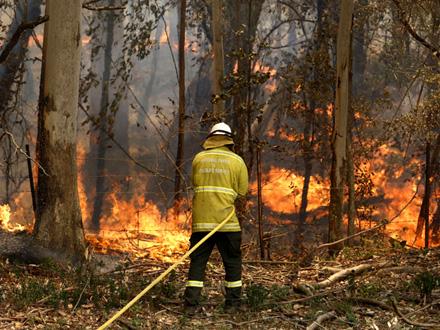 Masovna evakuacija iz područja gde haraju šumski požari FOTO: AP