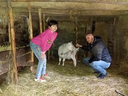 Mala Anđela ima samo jednu kozu. Foto: Lična arhiva/FB