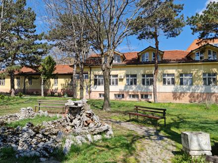 122 ležećih pacijenta sa bronhopneumonijom FOTO: ZC Vranje
