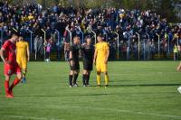 Dinamo-Voždovac 1:0
