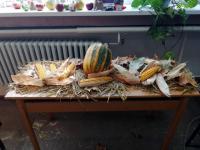 Svetski dan hrane 2019