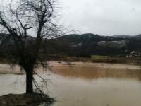 Poplave Han