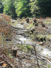 Reka Garvanica premeštena u cevi