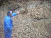 Nepoznati fosili kod Buštranja