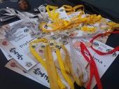 31 medalja za karatiste FENIKSA