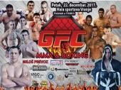 18 borbi na 3. MMA spektaklu