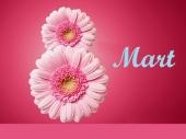 Čestitke rukovodstva Vranja povodom 8. marta