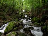 Dekani beogradskih fakulteta stali u odbranu staroplaninskih reka