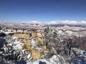 SAD: Sneg u pustinjskim gradovima, smrznuti kaktusi