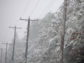CRVENI METEO ALARM: Srbija zavejana, sneg pada duže od 24 sata, problemi u pomoravskim selima