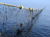 Klopka za krivolovce: Bacili mrežu u jezero, pa uleteli u zasedu ribočuvara