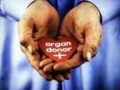 Istine i zablude o doniranju organa