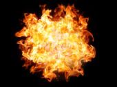 Drama: Zapalio se autobus na autoputu Miloš Veliki