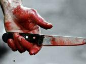 Surovo ubistvo kod koceljeve: Violeta (19) izbodena više od deset puta do smrti, osumnjičen njen momak
