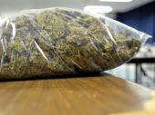 Tinejdžeri u podrumu krili marihuanu