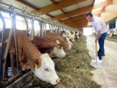 Studijska poseta: Grad vodi poljoprivrednike u Mađarsku i Poljsku