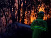 Veliki šumski požari u Australiji: Troje nestalo, 35 povređeno u požarima