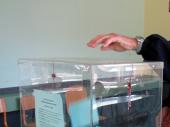 Macura: Strpljenjem i učešćem do promene izbornih uslova