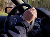 Najsočnije psuju francuski i grčki vozači, a na putevima najviše ginu Hrvati, Bugari i Rumuni