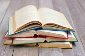 """Mini biblioteka ,,Knjiga na dar"""" iz Belgoroda krenula ka Nišu"""