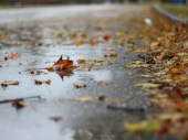 Oblačno i hladnije, na jugu i istoku moguća kiša i sneg