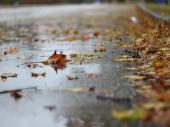 Varljiva zima: Danas proleće, a sutra preokret