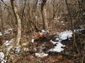 Tužilaštvo: Beživotno telo nađeno u Surdulici pripada nestalom Lazaru FOTO