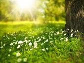 Uskršnji dan: Vrućina, pa lokalni pljuskovi
