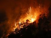 Požari ne prestaju da besne u Kaliforniji, vatrena stihija uništila čitav grad