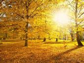 Prognoza za oktobar: Kakvo nas vreme čeka ove jeseni