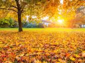Ima li nade za MIHOLJSKO LETO: Poznati meteorolog izneo prognozu za oktobar